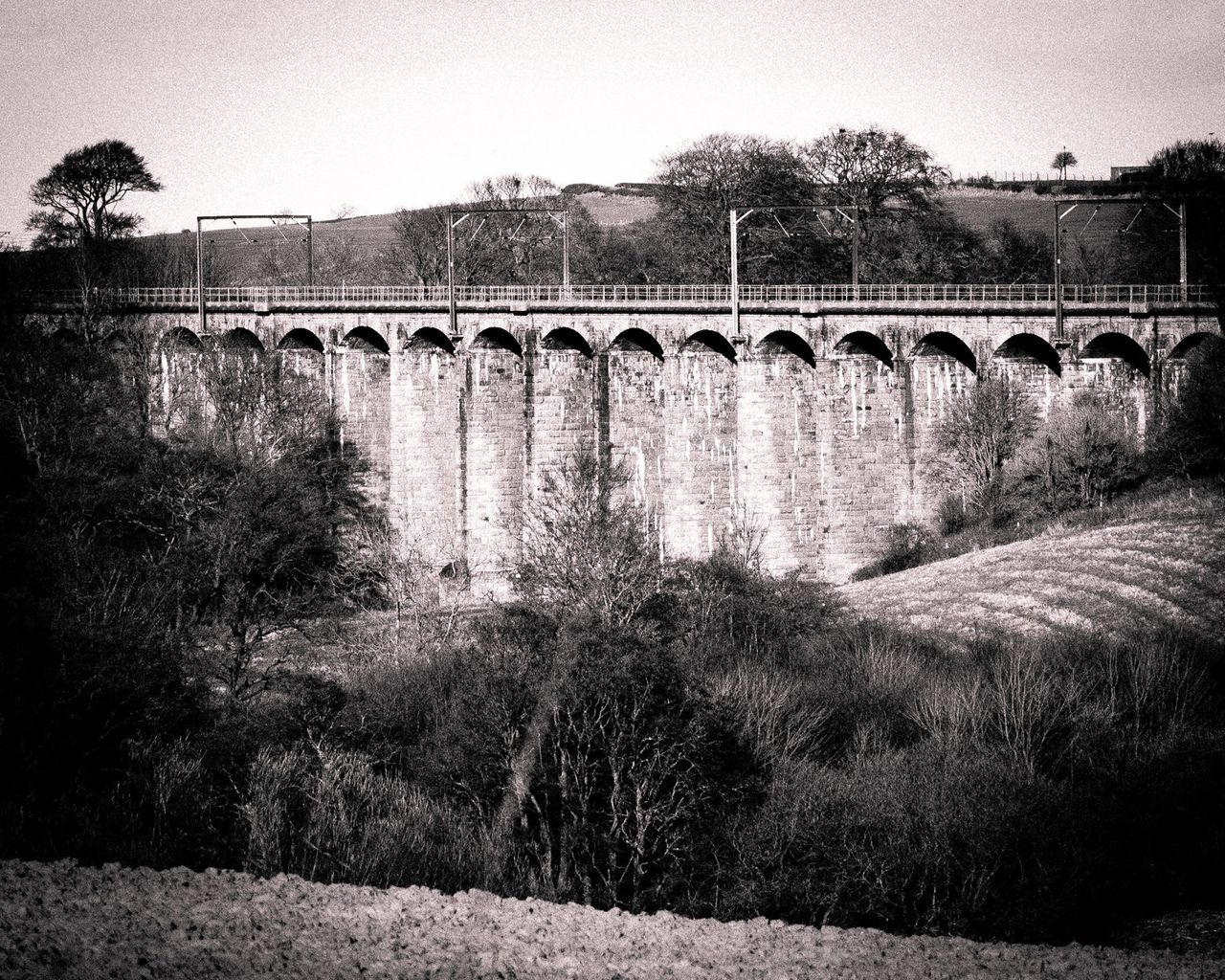 bridge - man made structure, connection, architecture, viaduct, arch bridge, built structure, arch, transportation, no people, train - vehicle, tree, river, outdoors, day, sky, water, nature