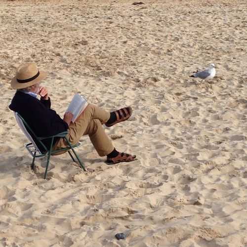 Full length of man reading book at beach by seagull at beach
