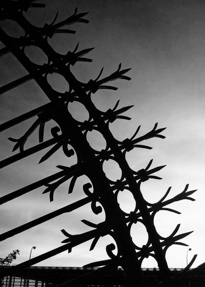Friday Monochrome Sky And City Fencing