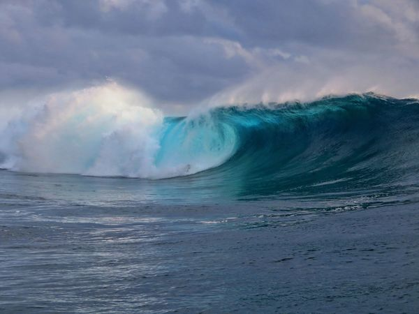 Water Humpback Whale Sea Beauty Whale Motion Landscape Sky Majestic Scenics Shore Idyllic