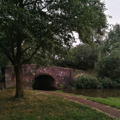 Arch bridge by trees against sky