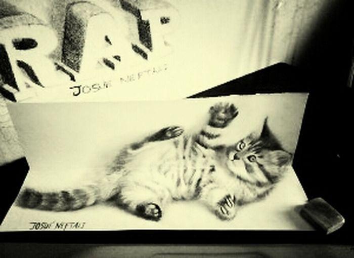 'w' Drawing Cat