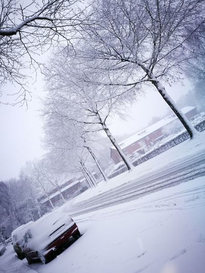 Winter Snow Car Cold Temperature Weather Transportation Nature Road Day No People