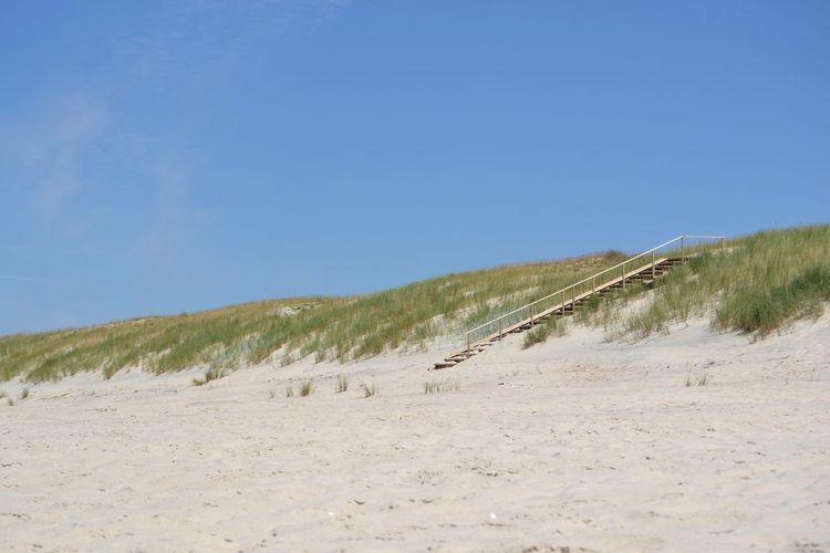 stairways Sand Dune Clear Sky Desert Sand Beach Blue Sunny Sky Grass FootPrint