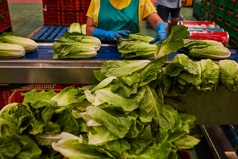 Green vegetables for sale at market stall