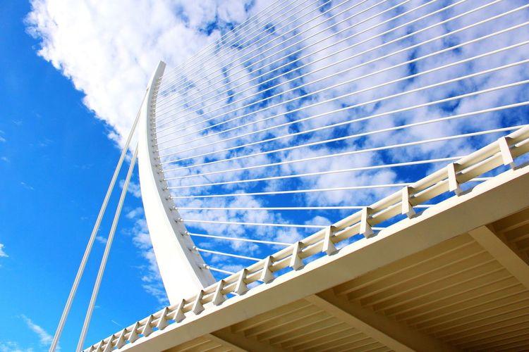 Ciudad De Las Artes Y Las Ciencias Spain ✈️🇪🇸 Bluesky Bridge The Architect - 2016 EyeEm Awards Traveling