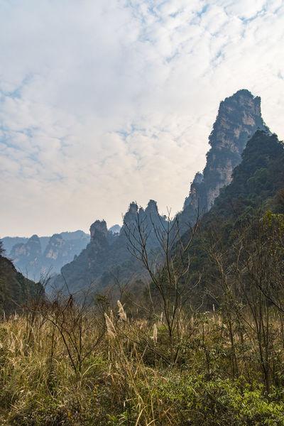 ZhangjiajieNationalPark Colorful Mountain Moutain Top Moutain View My Point Of View Zhangjiajie