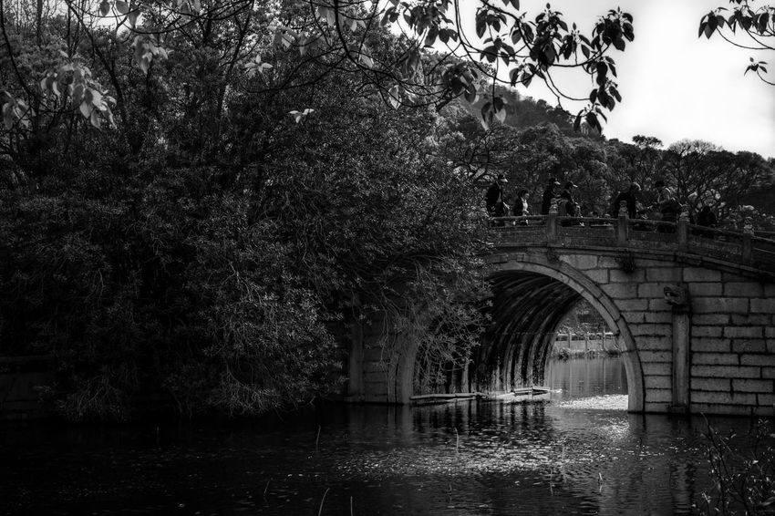 Bridge crossing a lake in a Chinese temple. Architecture Temple Day Outdoors Religion China Asian  Temple Architecture Travel Destinations Building Exterior Blackandwhite Water Tree Bridge Lake