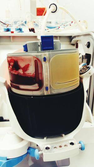 Blood Bloodbank Apheresis Platelets