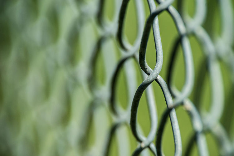 Backgrounds Chain Link Fence Chainlink Chainlink Close Up Chainlink Fence Chainlinkfencephotography Chainlinks Close-up Complexity Day Full Frame Green Color Metal Nature No People Outdoors Selective Focus