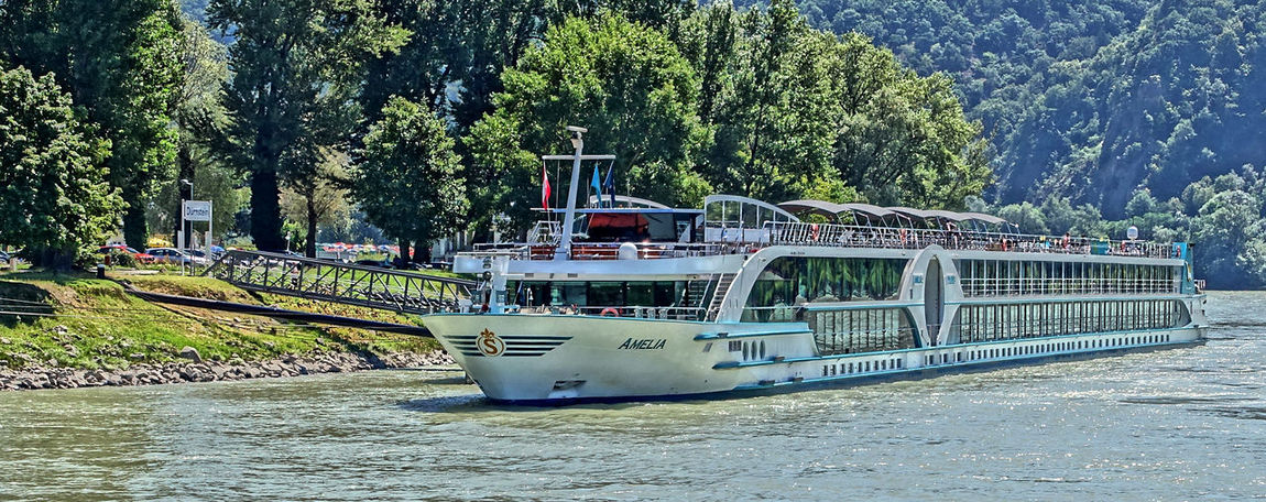 River Danube cruiseship Waterfront Water Tree Transportation Scenics Sailing River Cruising River Outdoors No People Nautical Vessel Nature Moored Mode Of Transport Growth Day Boat Beauty In Nature River Danube