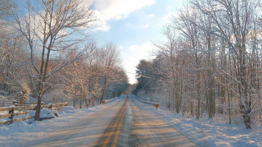 Contry Road Rural Scene Tree The Way Forward Winter Diminishing Perspective Snow Bare Tree Cold Temperature Road Outdoors Sky Day Beauty In Nature Nature Branch