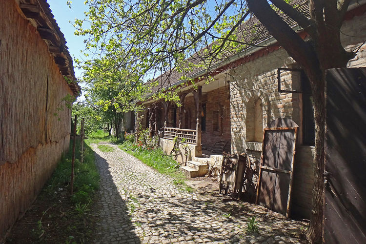Old rural house Country Living Rural Architecture Building Exterior Built Structure Day Direction Europe Footpath House No People Outdoors Sunlight The Way Forward Tree Village