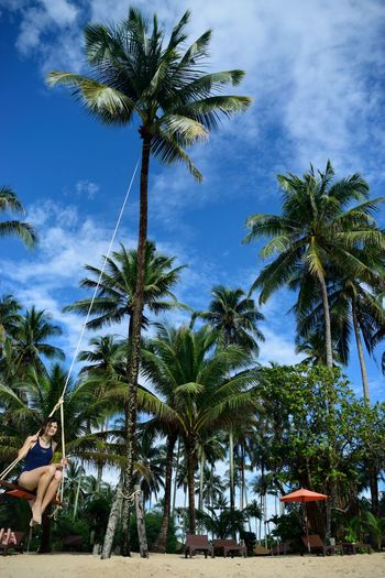 Low angle view of young woman swinging on palm tree at beach
