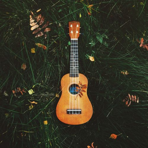 My soul Guitar Music Musical Instrument Ukulele Arts Culture And Entertainment No People Musical Instrument String Grass