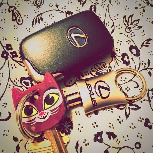 Happy cat: New car. My first hybrid. Freaky. Dagnabbit, now I have a car payment again. Keys New Car