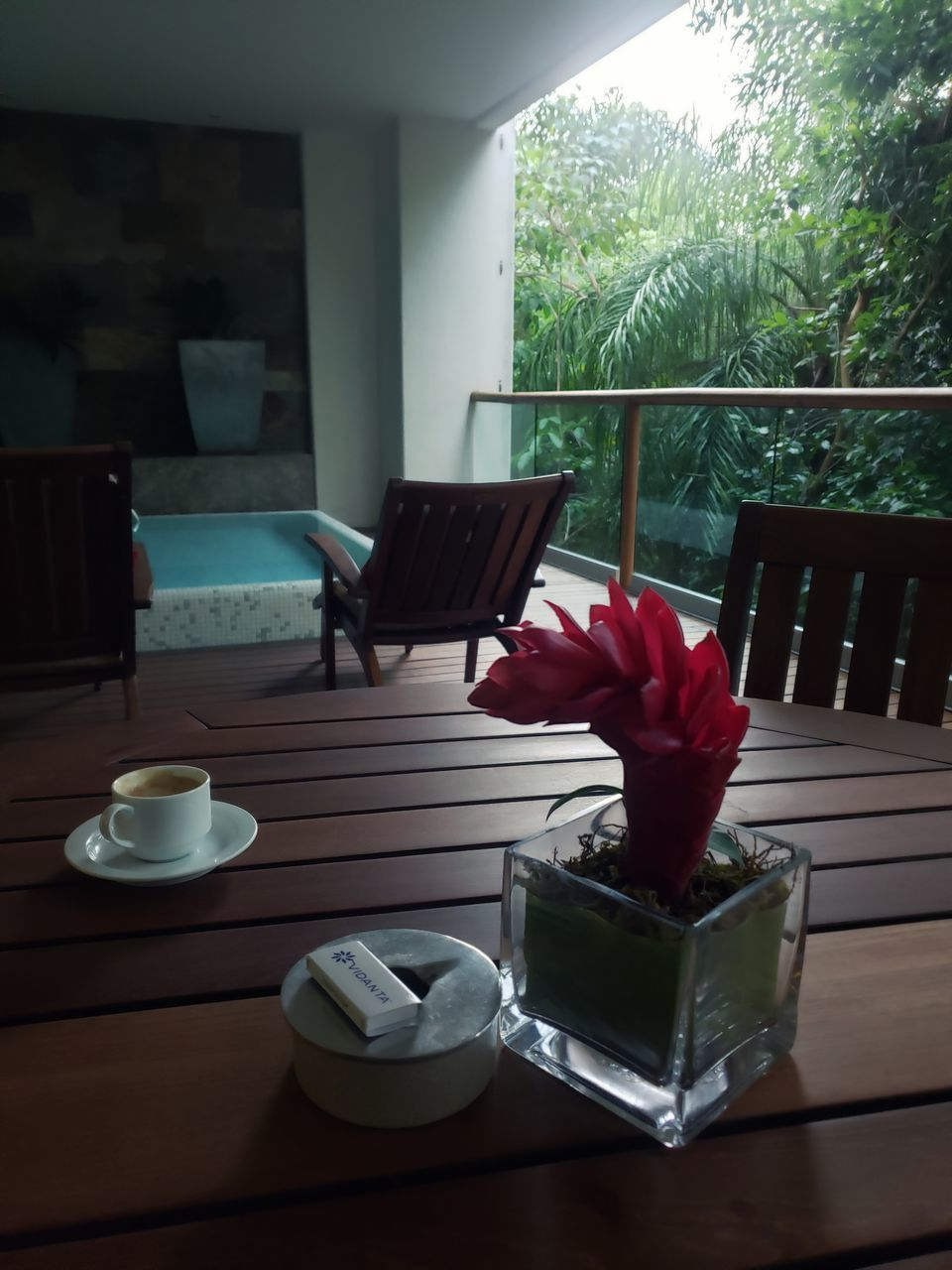 table, indoors, cup, plant, no people, mug, window, drink, flower, nature, food and drink, coffee cup, flowering plant, container, day, refreshment, home interior, absence, coffee, potted plant, tea cup, coffee table, teapot