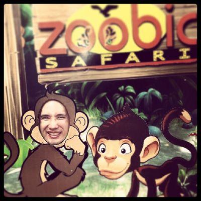 "Monkey, monkey... "")"