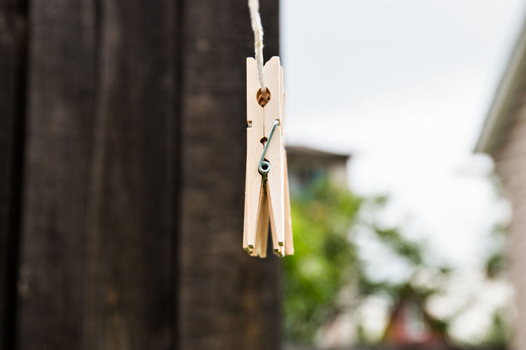 linen clothespins Close-up Clothesline Clothespin Clothing Day Focus On Foreground Hanging Music Nature No People Outdoors Paper Plant Rope Selective Focus String Tree Wood - Material