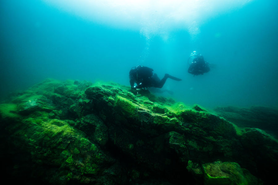 Baikal under Ice Adventure Baikal Blackandwhite Cold Coral Dark Drysuit Exploration Ice Leisure Activity Lifestyles Real People RISK Russia SCUBA Scuba Diving Scuba Diving Sea Travel UnderSea Underwater Unrecognizable Person Vacations White Winter