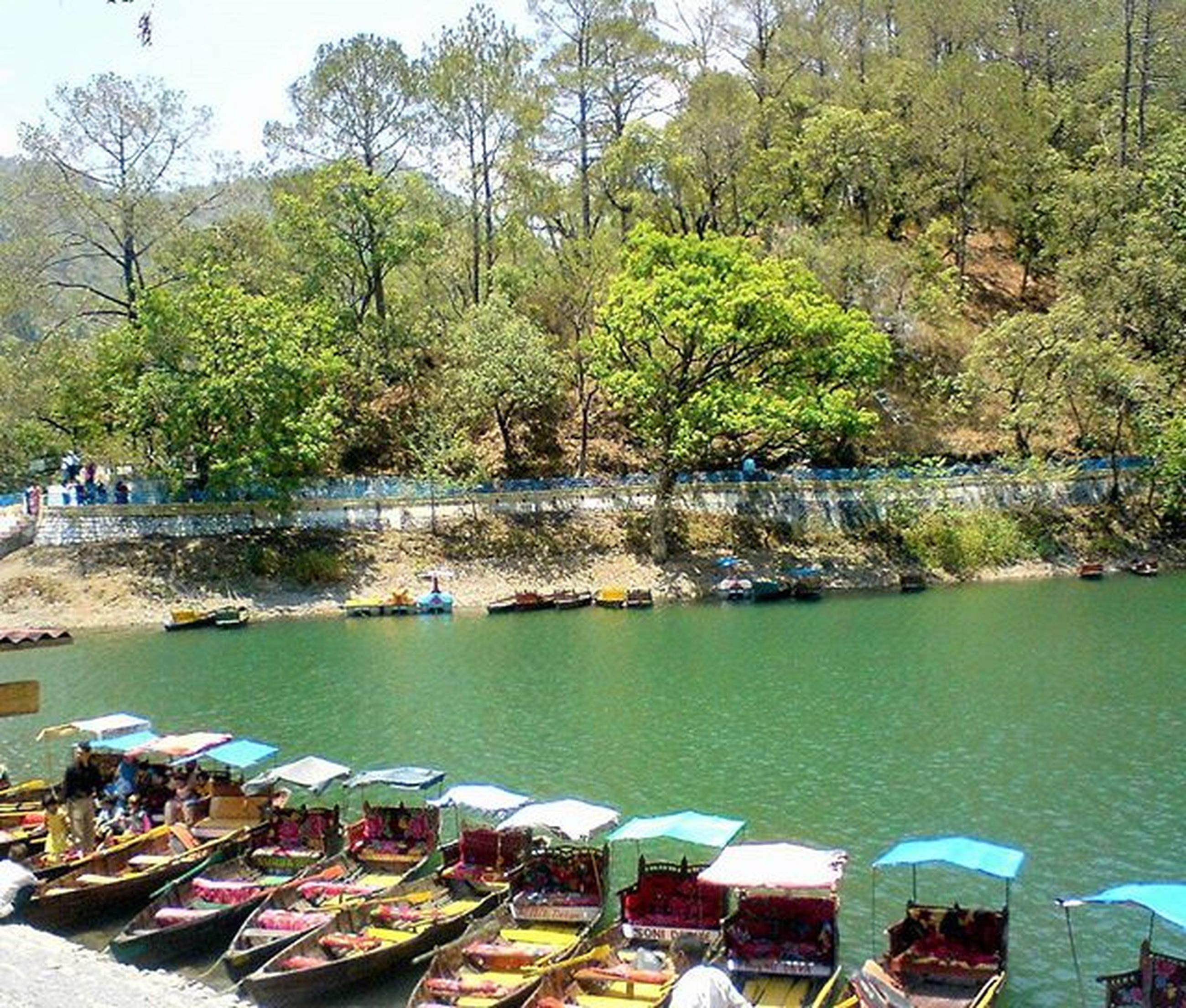 water, tree, nautical vessel, moored, boat, transportation, mode of transport, lake, tranquility, nature, day, tranquil scene, scenics, beauty in nature, outdoors, river, sky, incidental people, green color, high angle view