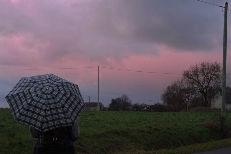 Field Sky Real People One Person Outdoors Cloud - Sky Nature Day Umbrella One Woman Only Rain Rainy Days Alone Tranquility Cold Temperature Pink