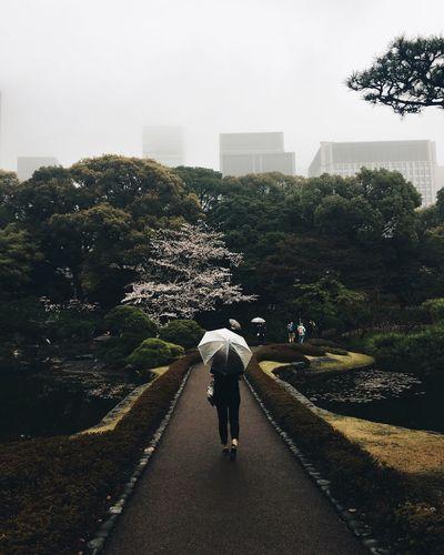 Person walking in garden
