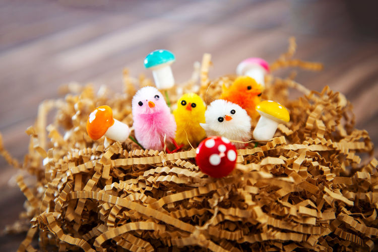Easter Easter Egg Easter Ready Representation Holiday Celebration Creativity Bird Art And Craft No People Close-up Egg Young Bird Toy Human Representation Food Selective Focus