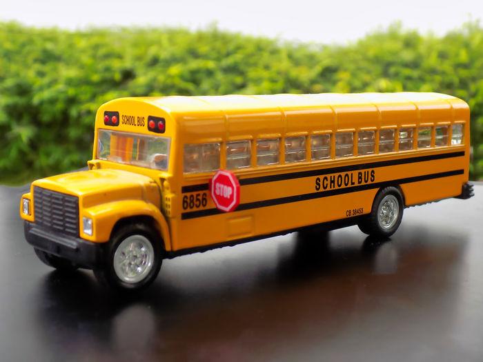 School bus on road against trees