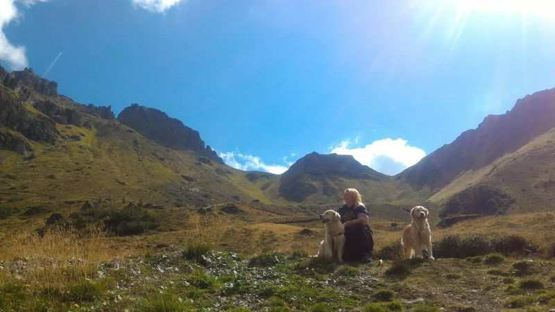 Mountain Summer Family Dogs