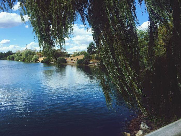 Summer. Water