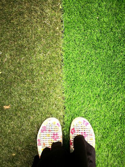 Turf Artificial Grass Old And New Fake Grass Comparison Low Section Standing Human Leg Shoe Directly Above High Angle View Pair Personal Perspective Human Foot Grass Putting Green Footwear Grass Area