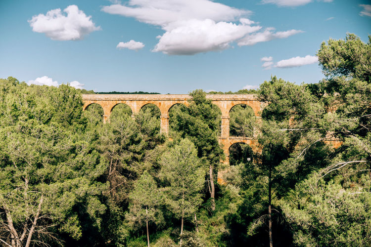 Leveled viaduct bridge in the forest