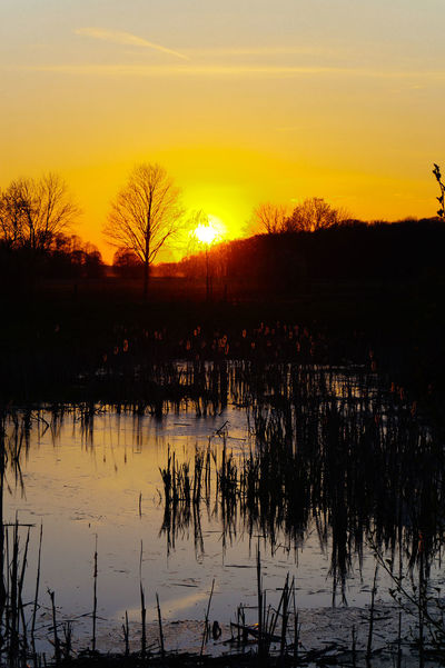 EyeEm Nature Lover Nature Outdoors Sky Sun Sunset