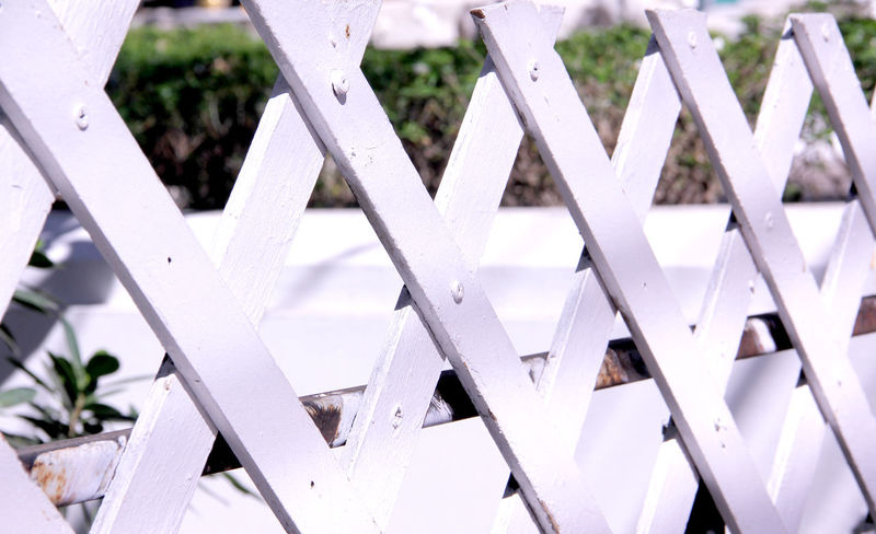 Wooden fence white color in Thailand Home Building Safety Safe Living Healthcare Healthy Relax Tree Thailand Happy Holiday Summer Objects Structure Wall Wooden Wall Fence Wooden Fence Backgrounds Cube Rural Countryside Travel Backgrounds No People Full Frame Close-up Outdoors Day