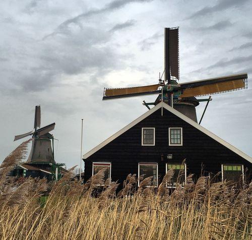 Mulini A Vento Grano Wind Contrast Windmill