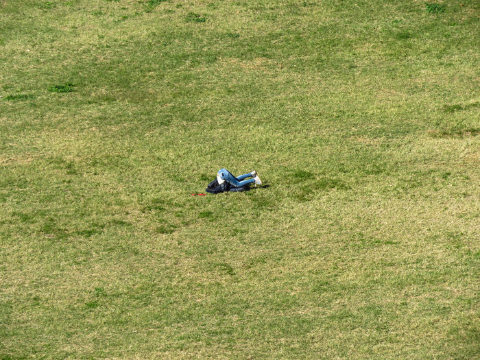 High angle view of person doing headstand on grass field