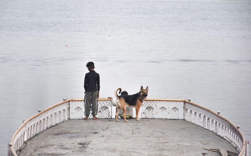 Rear view of man with dog on water