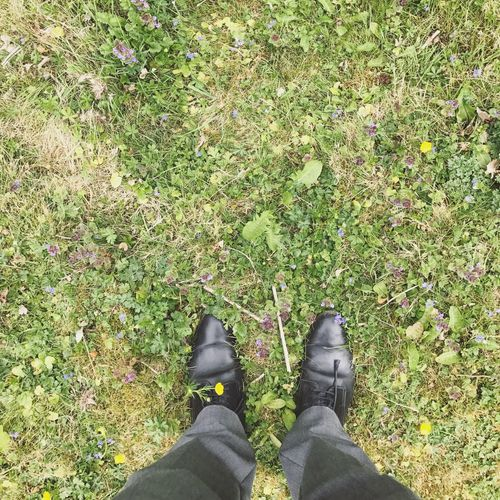 Shoe Low Section Human Leg Standing Grass Human Body Part High Angle View Personal Perspective One Person Outdoors Day Directly Above Leaf Nature Autumn Green Color Growth Plant Real People One Man Only England