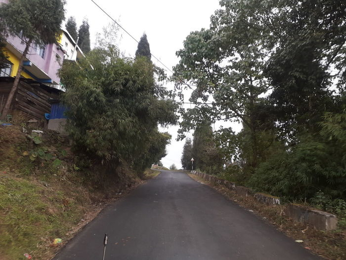 Road amidst trees against sky in city