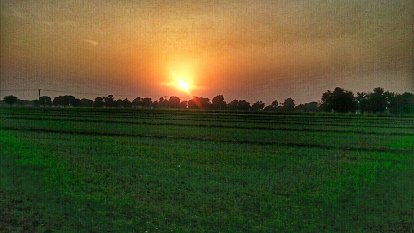 Evening.phone photography Greenery My Edits Mood Captures Phone Edited I Love Nature Smartphone Sharing My Photos My Photography Phone Camera My Clicks  My Click  PhonePhotography Phone Photography Phonecamera Phoneclick Mobile Phone Photography Landscape Nature Beautiful Nature Rural Life Beautiful ♥ Landscapes Simple Life Phone Edits Proud To Be Pakistani