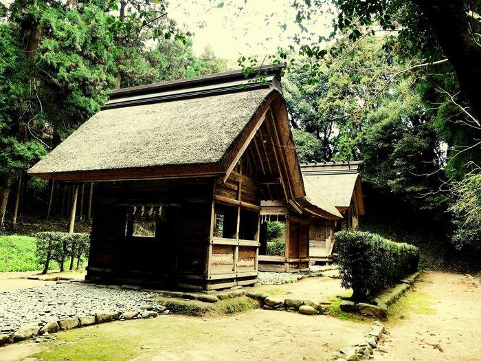 桜井大神宮 3 糸島市 福岡県 Shrine Shrine Of Japan Taking Photos Relaxing Itoshima City Fukuoka,Japan