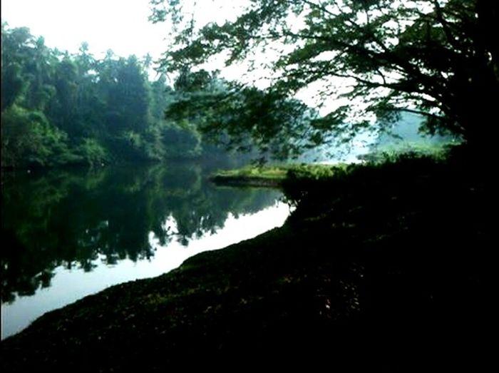 Camping Jogging Relaxing Picnic