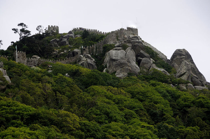 Castle of the Moors in Sintra Castle Of The Moors In Sintra Beauty In Nature Castel Clear Sky Cliff Day Low Angle View Mororsport Mountain Nature No People Outdoors Rock - Object Sky Tree