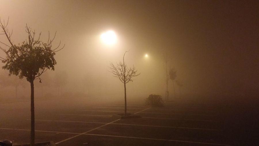First Eyeem Photo Auchan Parking