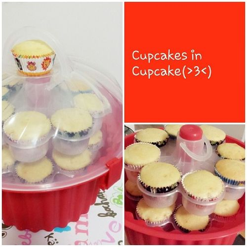 i love cupcakes~ Cupcakes in Cupcake~ Cupcakecontainer Red Winners