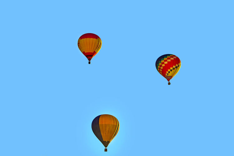 Colored hot air balloons in the blue sky