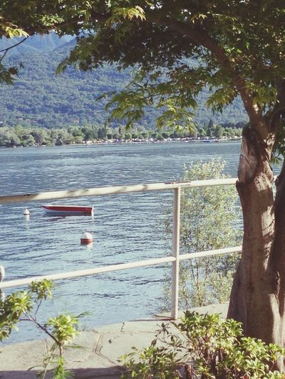 Holiday ?? Italy Lago Maggiore First Eyeem Photo