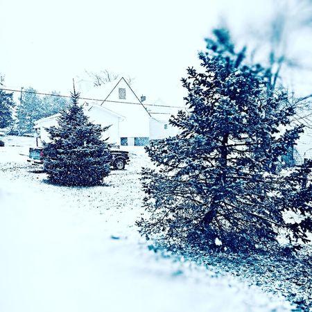 Snow ❄ Marietta Cold