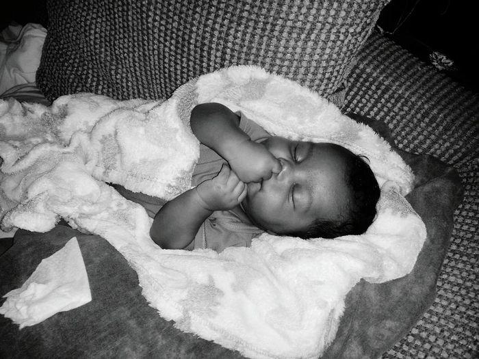 Sleepyhead Sleepyprince Innocence